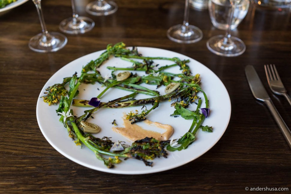 Grilled broccolini with bottarga and pickled radishes