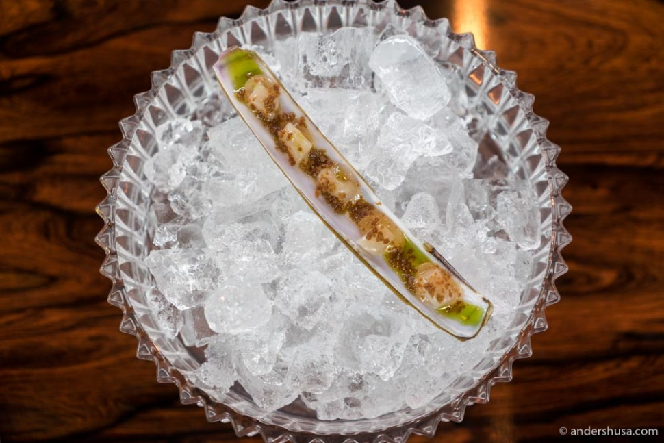 Razor clam from Fosen with fermented pear and crispy yeast.