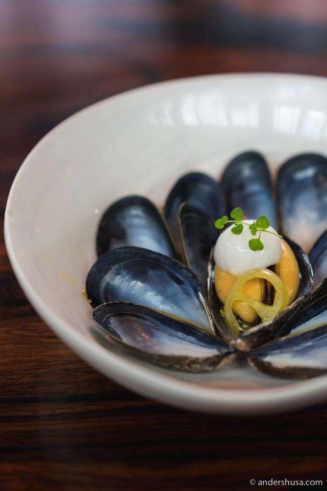 Mussels from Fosen.
