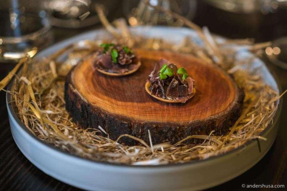 Deer tartlette with smoked mushroom.