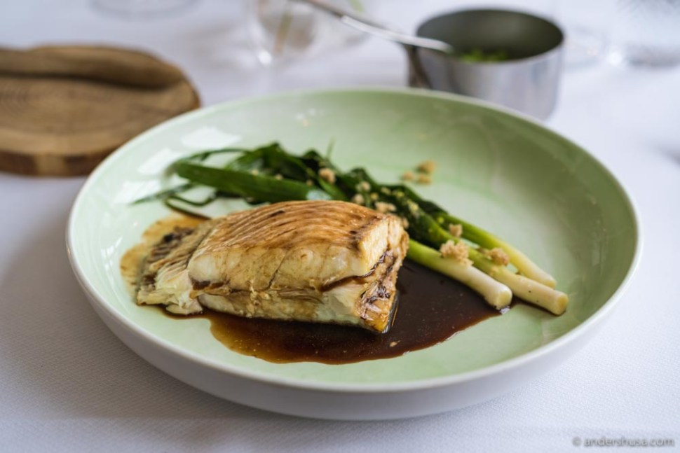 Turbot on the bone with new leeks and matelote (a red wine sauce).