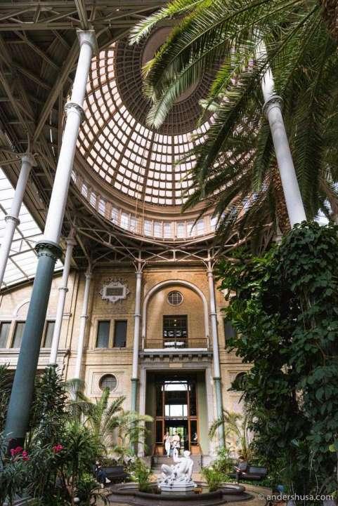 The spectacular atrium in Copenhagen's Glyptoteket.