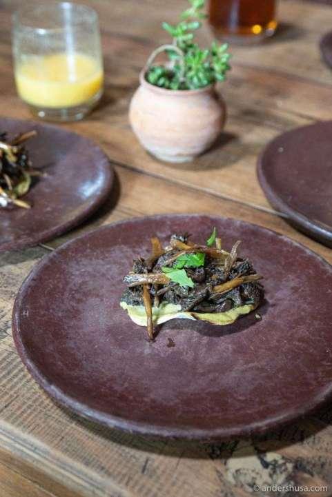 Mushroom tostada.