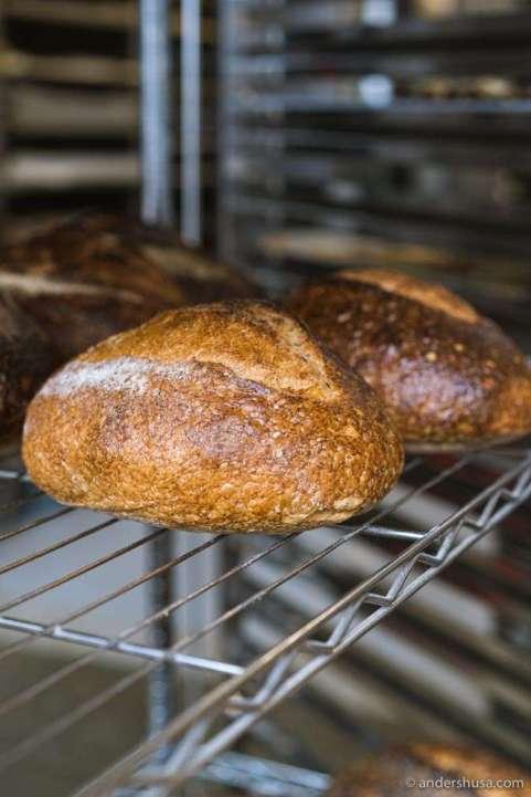 A loaf of sourdough bread at Karjase Sai.