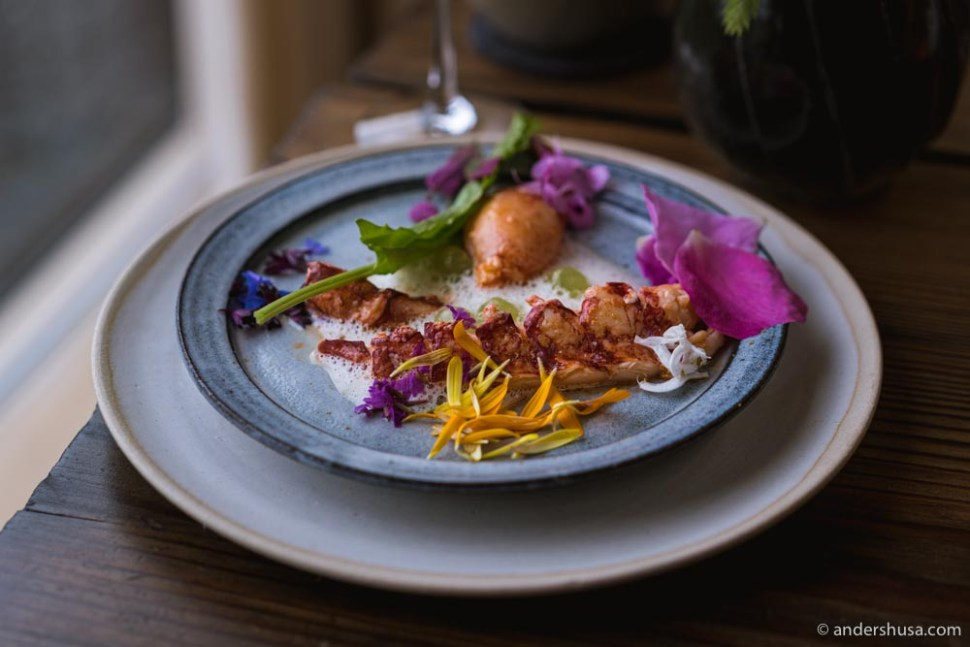 Lobster and rose petals from Noma's summer season 2021.