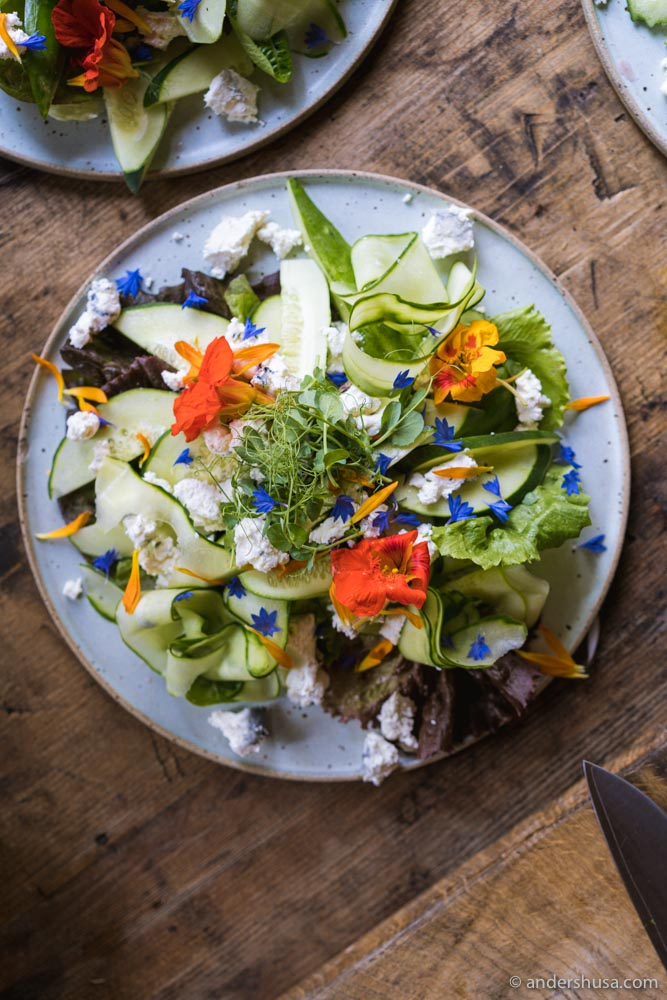 A salad with vegetables from the farm.