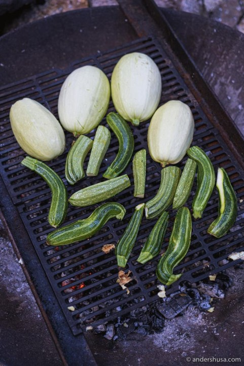 Veggies on the grill.