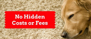 Seattle Carpet Cleaning Costs