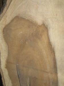 #330 Grain Detail