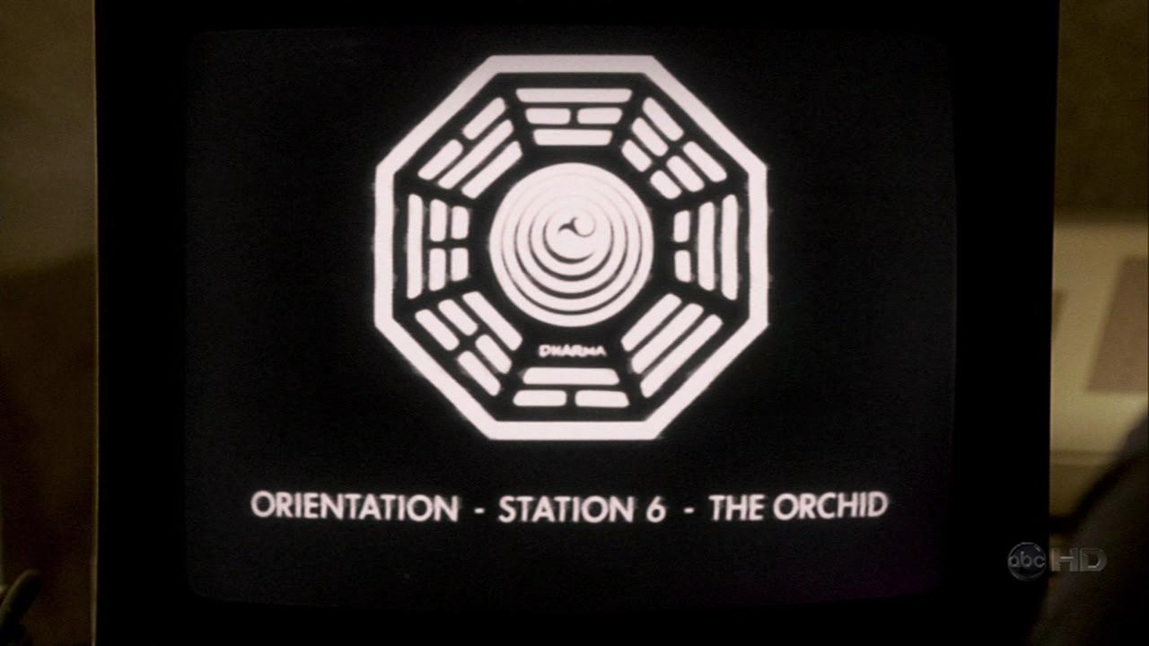 Orchid Orientation