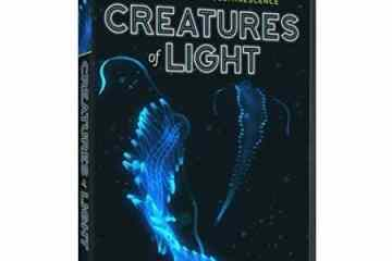 CREATURES OF LIGHT 8