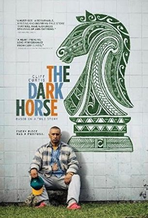 """ENTER TO WIN A DVD COPY OF """"THE DARK HORSE"""" 3"""