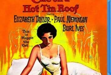 CAT ON A HOT TIN ROOF 11