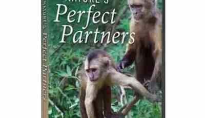 NATURE'S PERFECT PARTNERS 11