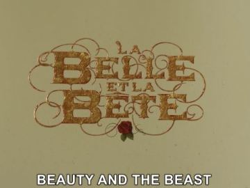 BEAUTY AND THE BEAST (2014) 45