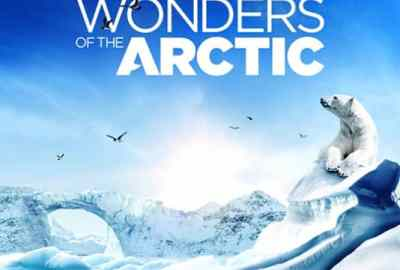 WONDERS OF THE ARCTIC 5