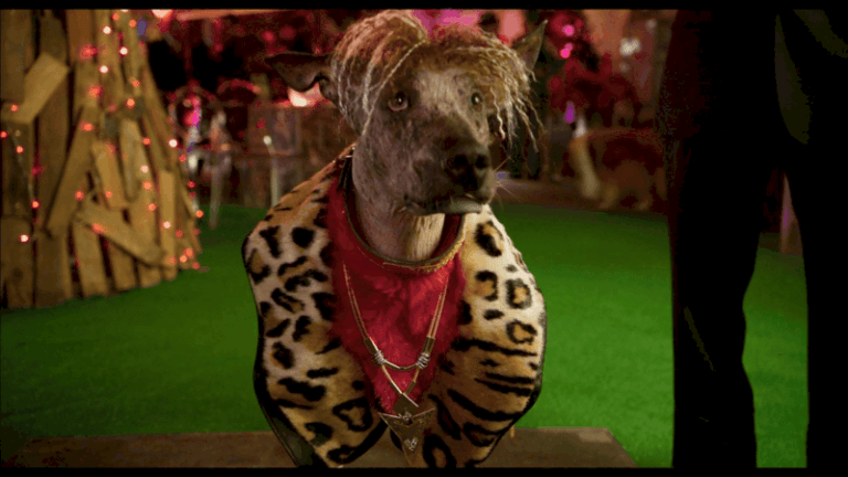 Take a first look at Stanley Tucci, Ludacris, Jordin Sparks, Gabriel Iglesias & Alan Cumming in SHOW DOGS 5