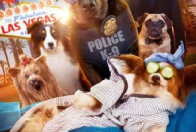 SHOW DOGS gets a new trailer! I'm not sure how Jon Hamm feels about this one. 7