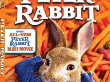 PETER RABBIT 43