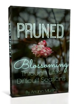 Pruned Book Cover