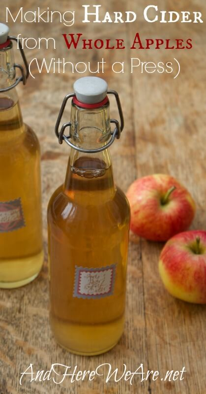 Making Hard Cider from Whole Apples, Without a Press And Here We Are...