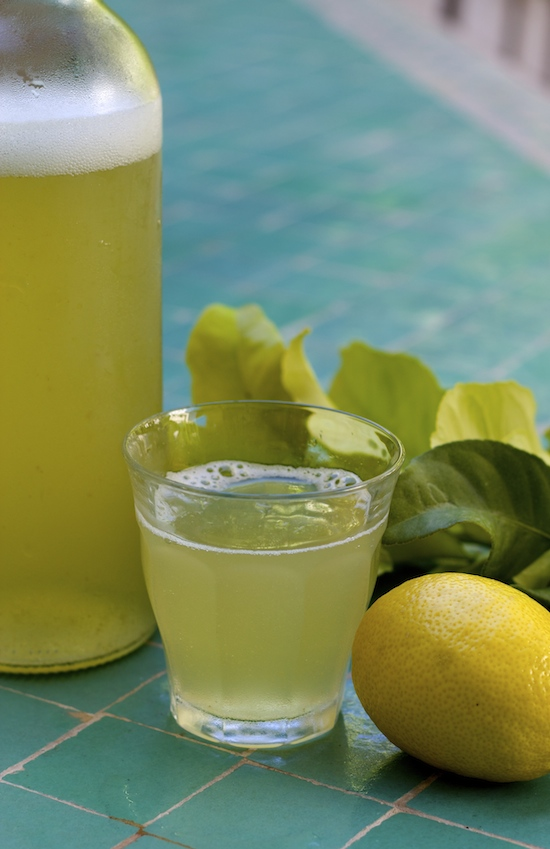 How to Make Lemon Leaf Soda (Bonus: It's a Probiotic!) - And