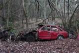 car-plantation23