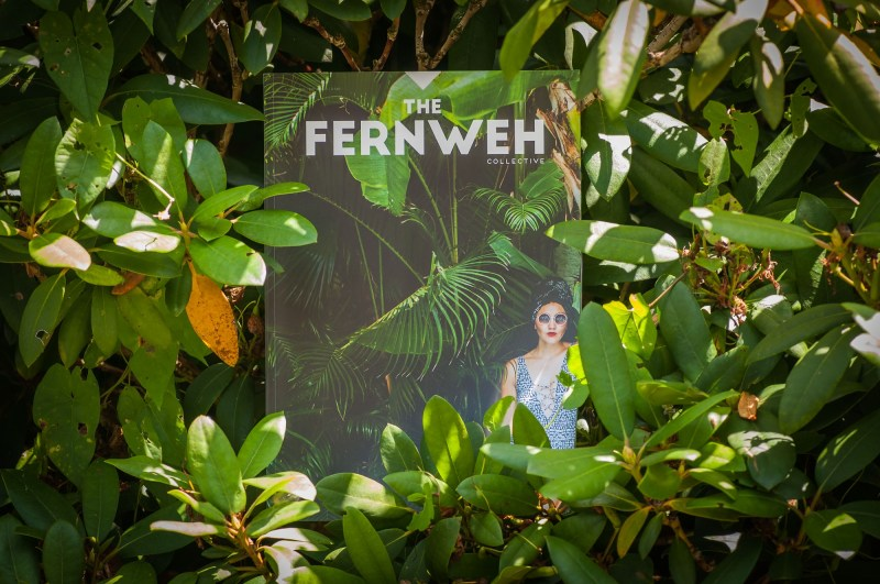 The Fernweh Collective - The Jungle