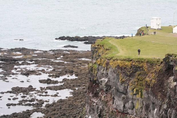 Látrabjarg Puffin Cliffs West Fjords Iceland