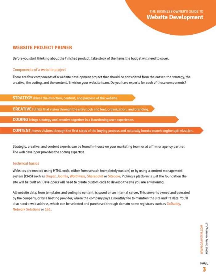 Infographics design and custom illustration | Andiamo Creative