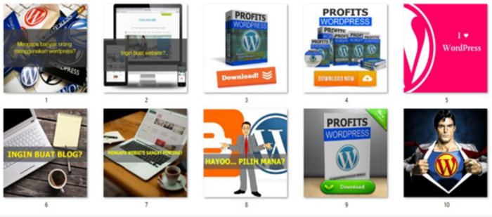 Profits WordPress viral social media image