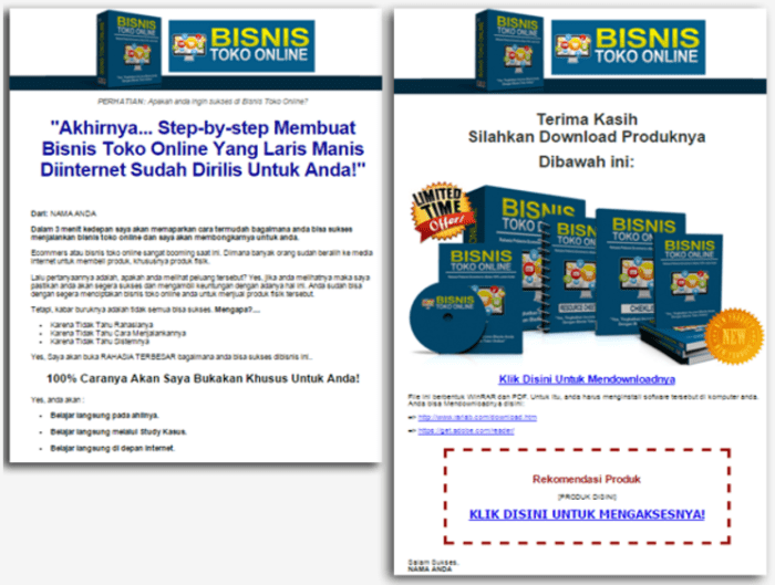 bisnis toko online sales page