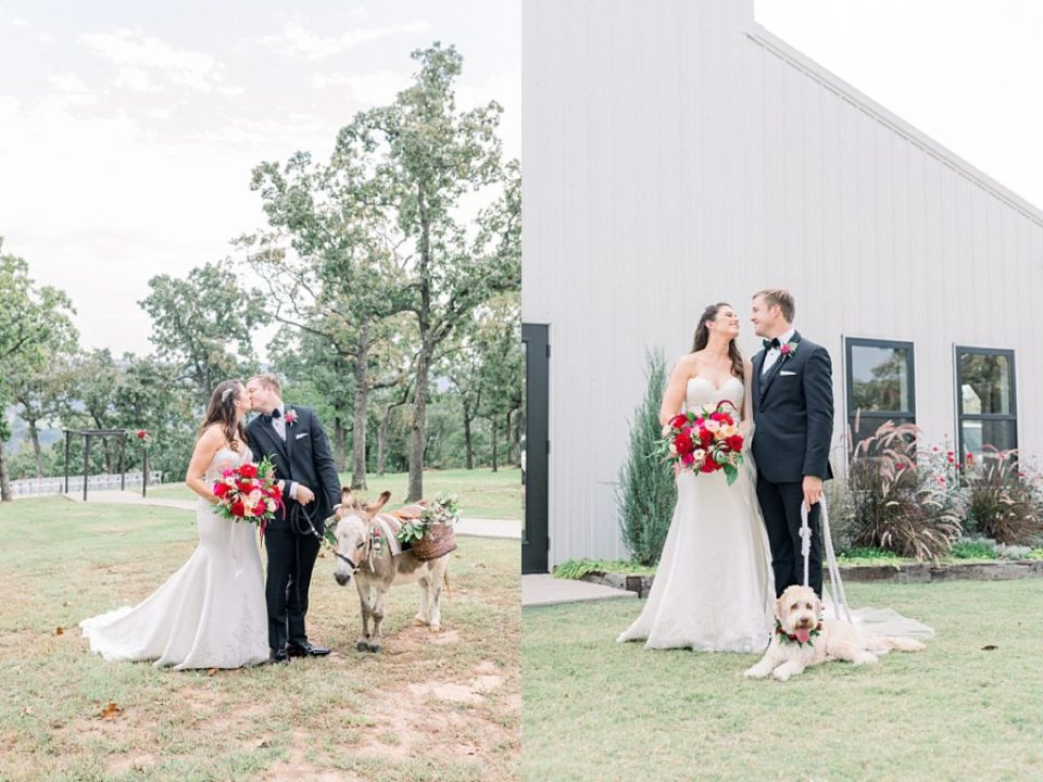 Bride and groom pose with wedding dog and wedding donkey