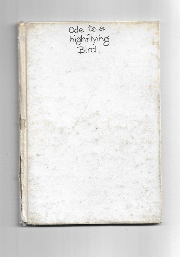 Ode to a highflying Bird