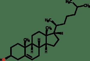 Молекула на холестерола
