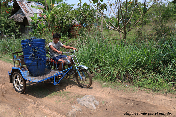 Campesino Laos