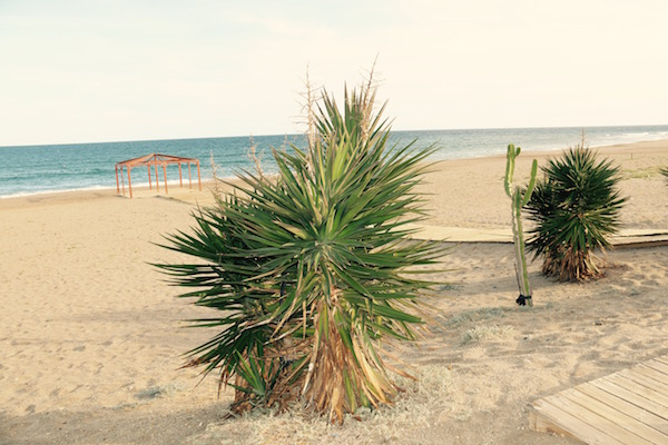 Playa Ventanicas