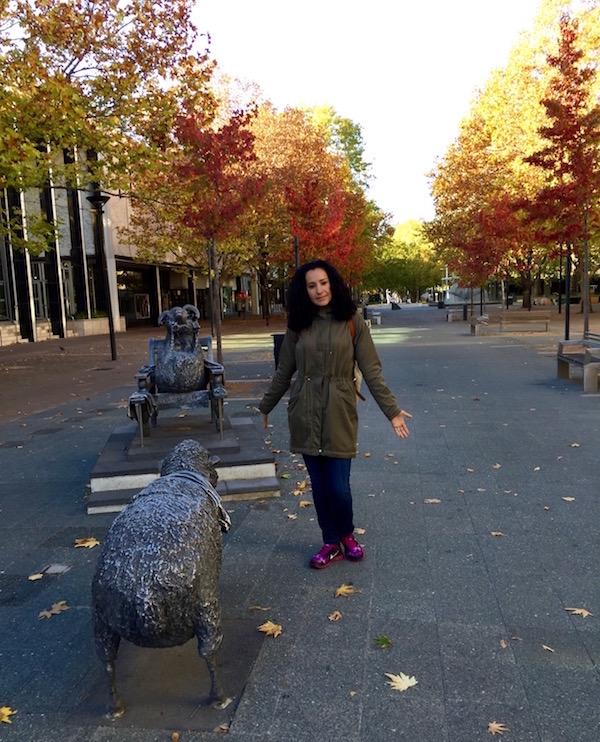 City Walk Canberra-Andorreando por el Mundo