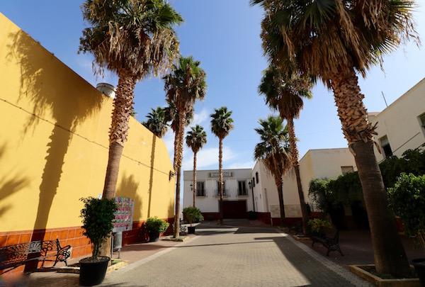 Plaza de las Palmeras