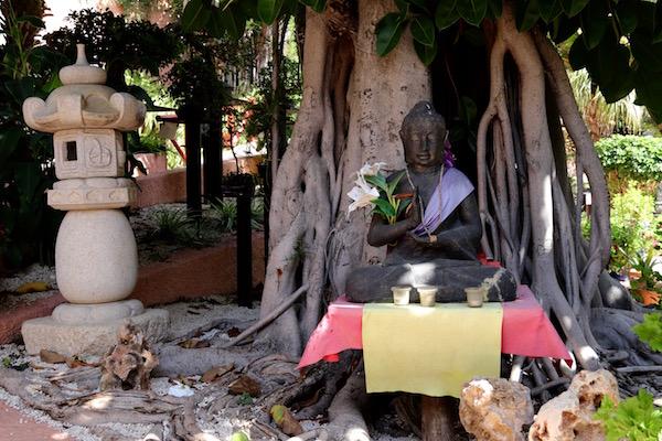 Buda Jardín Museo Bonsái