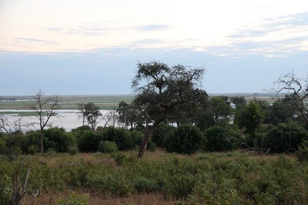Paisaje Parque Nacional Chobe