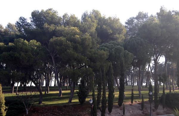 Jardines Alcazaba