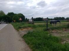 Bauernhof und Pferde