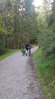 Mann schiebt zwei Räder einen Waldweg hoch