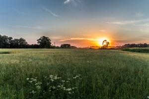 Sonnenuntergang Moosmühle mit Blick Richtung Thalhammer Moos
