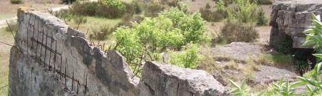Es entwickelt sich... Kritik an der geplanten Schießanlage in der Döberitzer Heide wächst
