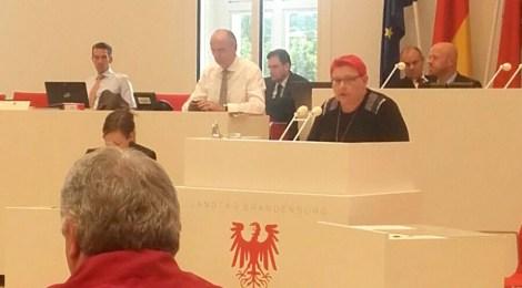 """Rede zum Antrag """"Zugang zum gesundheitlichen Versorgungssystem und zu Angeboten der psychosozialen Unterstützung für Flüchtlinge im Land Brandenburg"""""""