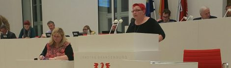 """Rede zum Antrag der AfD """"Voraussetzung  für  die  ordnungsgemäße  Arzneimittelüberwachung  im  Land  Brandenburg schnell herstellen"""""""