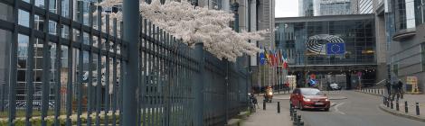 Bildungsreise mit dem kommunalpolitischen forum nach Brüssel