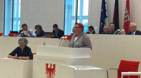 Rede zur Aktuellen Stunde zu 20 Jahre Handlungskonzept Tolerantes Brandenburg
